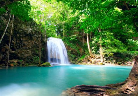 Beautiful Tropical Waterfalls Quotes