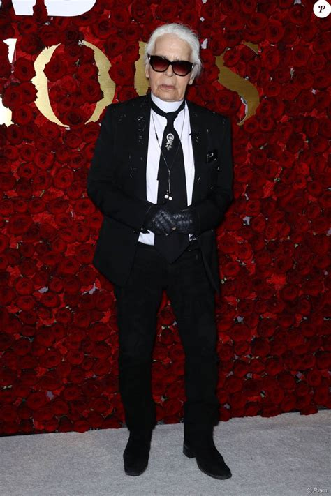 Karl Lagerfeld arriving for Women's Wear Daily 2nd Annual