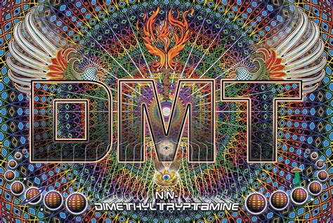 DMT Is the Drug Everyone Wants to Try, But Why?