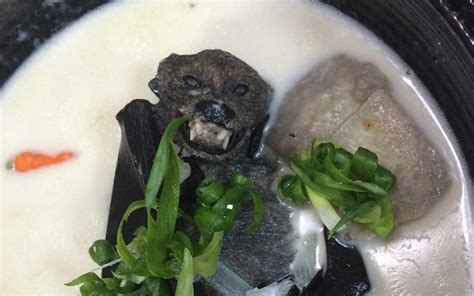 15 Animals People Actually Eat In This World   KopiFolks