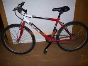 Achat VELO TOPBIKE MOUNTAIN 50 d'occasion - Cash express